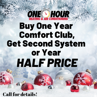 Buy one Get one Half Off a second system or year half price